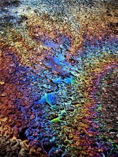 Petrolium/Gasoline spill by vandalised on DeviantArt Amazing Photography, Art Photography, Rainbow Aesthetic, Oil Spill, Rainbow Colors, Rainbow Star, Oeuvre D'art, Les Oeuvres, Statues