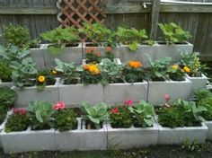 Image result for using concrete blocks for landscaping