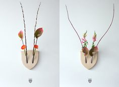 Elkebana: Symmetrical Flower Wall Trophies Inspired by Japanese 'Ikebana' Flower Arrangements  http://www.thisiscolossal.com/2015/02/elkebana-symmetrical-flower-arrangements/