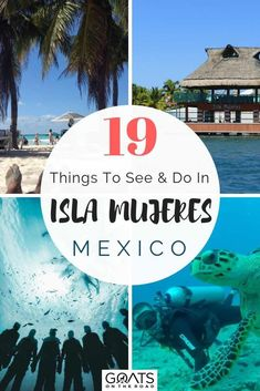 Isla Mujeres is a must see island of Mexico! Located just 20 minutes away from Cancun by ferry, it is perfect for a day trip or more! If you are up for adventure you can explore the underwater museum by diving or snorkeling, swim with whale sharks, and sail on a catamaran. Or you can relax on the beach at Playa Norte and visit the Mayan ruins at Punta Sur. Check out guide of 19 things you can see and do!   #mexico #Islamujeres #travelmexico