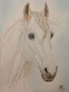 white horse de arteyayiloren en Etsy, láminas decorativas, ilustraciones, ilustration, pencil drawings, lápices de colores