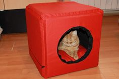 3 in 1 box, designed specifically for cats or small dogs, it turns in bed or armchair. It's a cube with sides of 40 cm, made of 3 cm thick sponge, the cover is removable due to the zippers.The cushion is stuffed with siliconised puff.