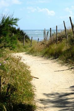 Going to the beach Saint Clement, Pastel Landscape, Poitou Charentes, Saint Martin, Sand And Water, Saint Jean, French Countryside, Beach Pictures, Pathways