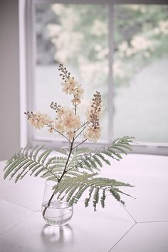 Simple arrangement with ferns Ikebana, Flower Power, My Flower, Flower Branch, Deco Floral, Arte Floral, Fresh Flowers, Beautiful Flowers, Flowers Vase