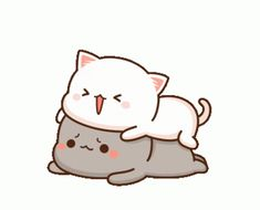 The perfect Peachcat Cat Cute Animated GIF for your conversation. Discover and Share the best GIFs on Tenor. Cute Cartoon Pictures, Cute Love Pictures, Cute Love Gif, Cute Love Cartoons, Cartoon Pics, Cute Images, Gif Lindos, Memes Lindos, Cute Anime Cat