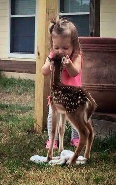 deer smooch