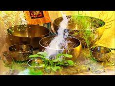 Sonidos Relajantes con Agua- Cuencos Tibetanos- Armonizar los Chakras-Meditación- Relajación - YouTube El Divo, Music Backgrounds, Chakras, Meditation Music, Relaxing Music, Youtube, Relaxer, Chakra Balancing, Calming Music