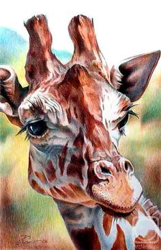 Diamond Painting Kit Sight Giraffe, Mosaic Diamonds, diamond painting animals, Stained Glass Diamond Painting Kit, Diamond Embroidery by InspirationArtUA on Etsy Colorful Paintings, Animal Paintings, Animal Drawings, Pencil Drawings, Art Drawings, Art Watercolor, Giraffe Art, Color Pencil Art, African Animals