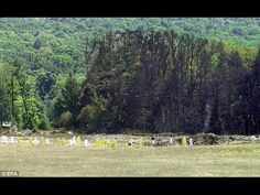 Shanksville Coroner: No Bodies Found at 9/11 'Crash' Site - Not a Single drop of Blood » The Event Chronicle