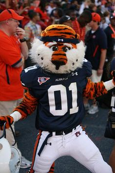 You're guide to Auburn football including hotel availability!
