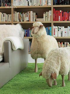 carpet grazing sheep