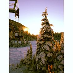 finally found a picture that looks good with the kelvin filter Snow Coming, Alaska Usa, Ski Resorts, Mountain Resort, Winter Holidays, Skiing, Filter, Holiday Decor, Sports
