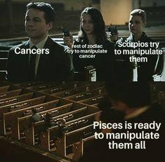 Pisces Love, Zodiac Signs Pisces, Pisces Quotes, Zodiac Signs Astrology, Zodiac Star Signs, Scorpio, Zodiac Funny, Zodiac Memes, Zodiac Facts