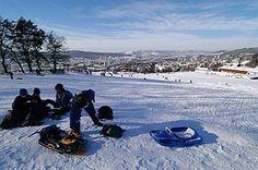Waid - Zürich Fotos von der Waid - Zürich. Hügel oberhalb von Höngg mit Aussicht über das Limmattal, der Stadt Zürich, Zürichsee und die Alpen. Mit dem Vitaparcours im Wald vom Käferberg.