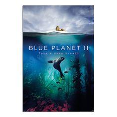 WIDEMOUTH BAY-JASON HAWKES 24X36 POSTER WALL ART PHOTOGRAPHY DECOR BEACH OCEAN!!