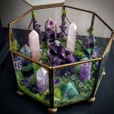 The Crystal Jypsy — Crystal garden seeks magickal human to vibe with...