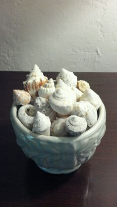 #8: WHAT INSPIRES ME: ~Seashells~ I've spent a lot of time at the beach in my lifetime. The sun, sand, and sea inspires fresh ideas for painting, photography, and even music. Seashells are a way that I keep the beach with me at all times. #MyHappySpace