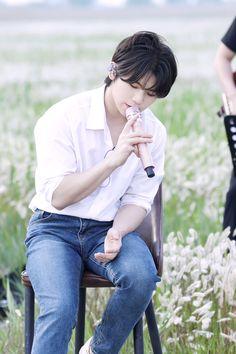 Dino Seventeen, Seventeen Woozi, Seventeen Debut, Jeonghan, Wonwoo, Choi Hansol, Lee Jihoon, Fandom, Seventeen Wallpapers