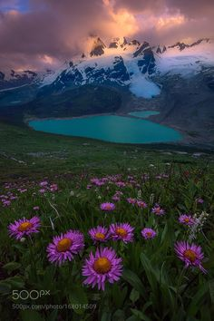 Enchantment by exploringlight. Please Like http://fb.me/go4photos and Follow @go4fotos Thank You. :-)