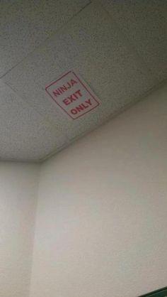 Ninja exit only
