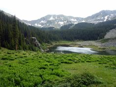A short drive from Taos town will bring you to Taos Ski Valley, with over 140 trails and breathtaking views. In the summer, most ski village businesses stay open. bearfoottheory.com