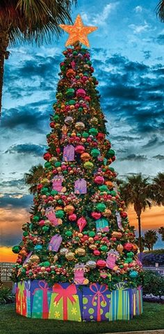 1000+ images about Dekra-Lite Holiday Christmas Trees on Pinterest ...
