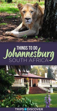 10 Top Things to Do in Johannesburg, South Africa - - Beste Reiseinformationen und Reiseführer North Shore Oahu, Africa Destinations, Travel Destinations, Travel Tips, Travel Guides, Travel Books, Travel Essentials, Budget Travel, Tanzania