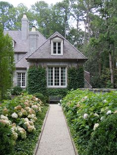 Crushed limestone walkway and Hydrangea border by Howard Design Studio.