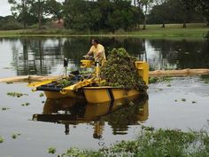 Photo Gallery | Pond Cleaning Services | Aquatic Weed Control Pond Cleaning, Weed Control, Cleaning Services, Location Map, West Palm Beach, Coolers, Les Oeuvres, Photo Galleries, Retail
