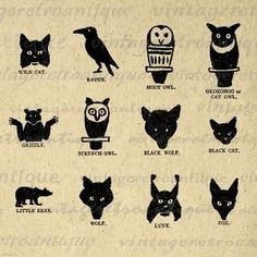Native American Animal Symbol <b>native american animal symbols</b ...