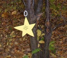 Star Nature Walk - Christmas Outdoor Activities