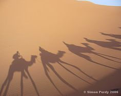 The shadows of a camel caravan are cast across the dunes near the Algerian border in eastern Morocco. Contrast has been added to this image. Shadow Painting, Shadow Art, Indoor Forts, Camels, View Image, Art Google, Caravan, Morocco, Egypt