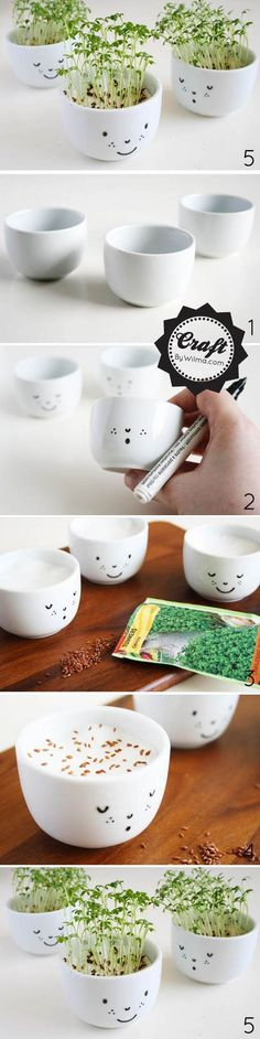 Diy Cute Bonsai   DIY & Crafts