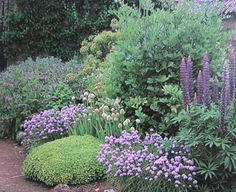 Herbs and flowers compliment each other: the lovely purple spheres in front are chives, tucked in among the flowers.