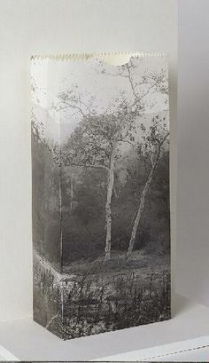 Tree Bag, 1966.   Jerry McMillan