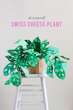 paper plant tutorial