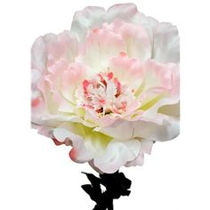 Botanic artistry cream peony hobby lobby wishlist pinterest add dimension height and color to your floral and greenery arrangements the artificial stem features gorgeous and soft peony blossoms mightylinksfo