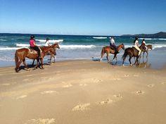 Noosa NP #Queensland #Australia    http://www.tripadvisor.com.au/ShowForum-g255067-i460-Queensland.html