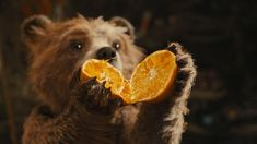 Framestore animation supervisor Pablo Grillo delves into the art of animation behind Paddington. Oso Paddington, Teddy Bear Cartoon, Teddy Bears, Bear Party, Pooh Bear, All Things Cute, Cute Cartoon Wallpapers, Lady And The Tramp, Animals And Pets
