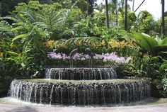 7 Most unusual public gardens of the World :http://www.greendiary.com/7-unusual-public-gardens-world.html
