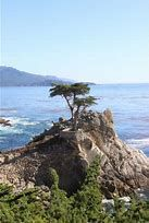 Image result for Pfeiffer Big Sur State Park, California