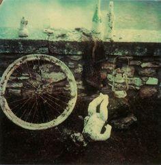 Andrei Tarkovsky / Polaroid