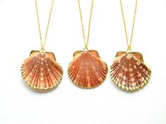 Sea Shell Necklace  Scallop Shell Necklace  Gold by DanaCastle, $27.00