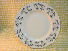 """Queen Anne """"Sonata"""" Salad plate ...tiny blue flowers."""
