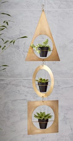 Obsessed! Brass plant hanger. A fun way to display plants with a little sparkle.