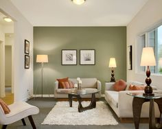 Best Green Color For Living Room Walls Art Deco 13 Sage Images Diy Ideas Home Furniture Fantastic Contemporary Designs