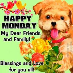 Happy Monday Pictures, Happy Monday Quotes, Happy Monday Morning, Monday Images, Good Morning God Quotes, Good Morning Messages, Special Good Morning, Good Morning Good Night, Morning Pictures