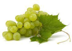 CLIQUE AQUI! 11 benefícios da Uva para sua saúde Benefícios da Uva - O importante é entender que quando se fala em saúde, existem várias frutas que realmente fazem parte de uma alimentação regulada. http://saudenocorpo.com/11-beneficios-da-uva-para-sua-saude/