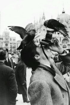 Alain Delon photographed by Robert Doisneau at the Piazza San Marco, 1962.