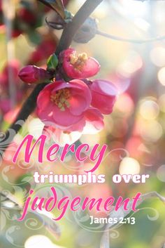 'James 2:13 (KJV) For he shall have judgment without mercy, that hath shewed no mercy; and mercy rejoiceth against judgment. (There will be no mercy for those who have not shown mercy to others. But if you have been merciful, God will be merciful when he judges you.) °°{DM} °°